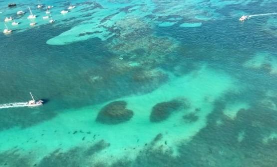 ДариТур днепр daritour daritourdnepr dnepr Доминикана Punta Cana 2