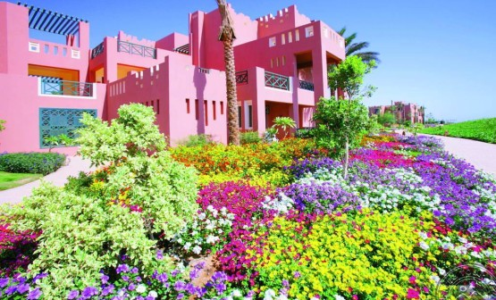 ДариТур Днепр Daritour Dnepr Rehana Sharm 4 5