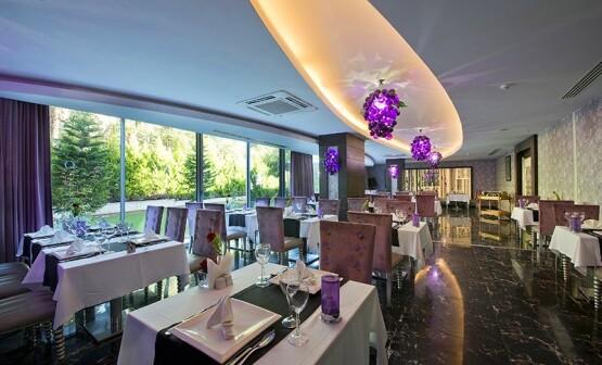 ДариТур Днепр Daritour Dnepr Q-Premium-Resort 1
