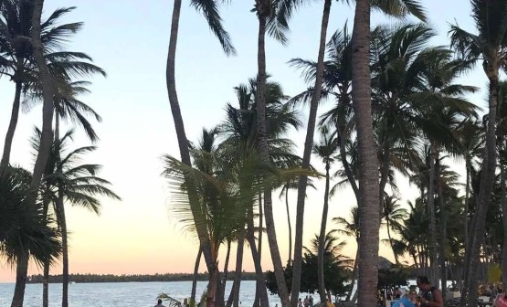даритур днепр daritour dnepr dominicana punta cana 12
